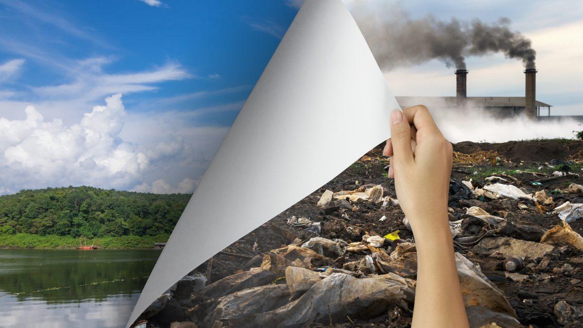 Contaminação do Solo: redução de riscos e remediação