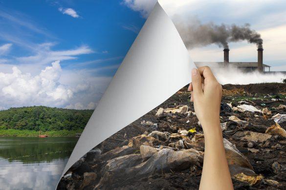 medidas responsáveis contra a contaminação do solo